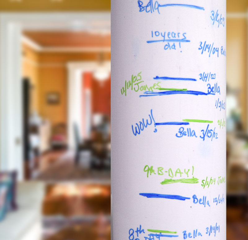 Kids Growth Chart Project Idea Pvc Pipe